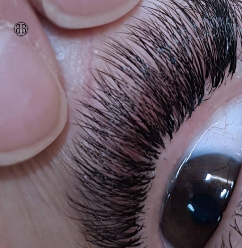 Eyelash Extensions in Hertford | Lash Treatments | Beauty Bar
